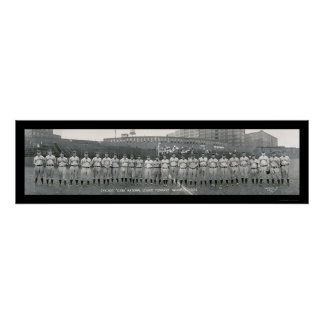 Chicago Cubs Champions Photo 1929 Poster