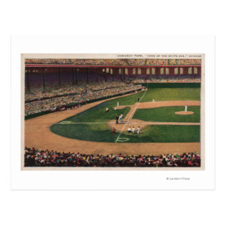 Chicago, IL - Comiskey Park, Home Plate, Basebal Postcard