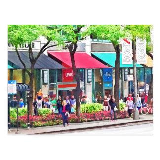 Chicago IL - El hacer compras a lo largo de la Postal