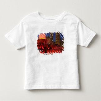 Chicago, Illinois, Buckingham Fountain Tee Shirt