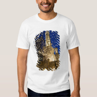 Chicago, Illinois, Old Water Tower with holiday Shirt