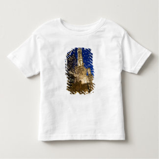Chicago, Illinois, Old Water Tower with holiday Toddler T-shirt