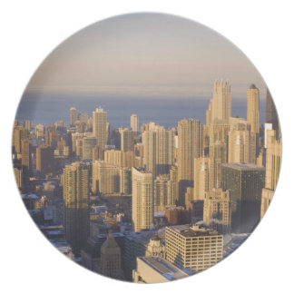 Chicago, Illinois, Skyline from the Sears Tower Dinner Plate