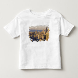 Chicago, Illinois, Skyline from the Sears Tower Toddler T-shirt