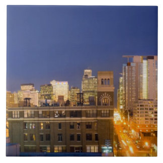 Chicago, Illinois, skyline shot from West Loop Ceramic Tile