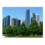 Chicago Illinois Windy City Park Buildings Destiny Post Cards