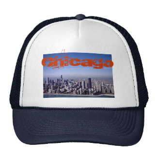 Chicago Illinois Windy City Park Buildings Destiny Trucker Hat