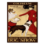 Chicago Kennel Club's Dog Show 1902 Postcards