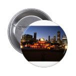 chicago millennium park pin