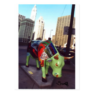 Chicago Parade of Cows Postcard
