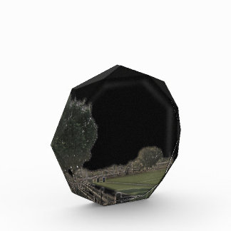 Chicago Park with Blackened Skies Award