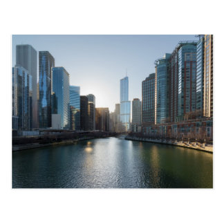 Chicago River Cityscape Postcard