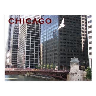 Chicago River Walk Travel Photo Postcard