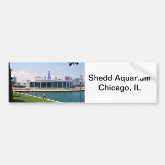 Chicago Shedd Aquarium collection Bumper Sticker