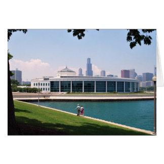 Chicago Shedd Aquarium collection Card