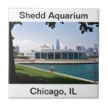 Chicago Shedd Aquarium collection Ceramic Tiles