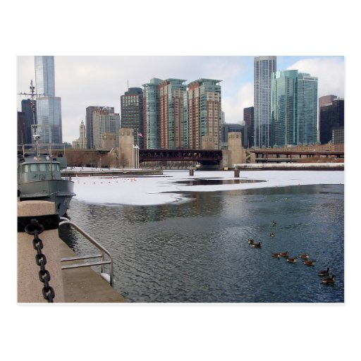 Chicago Skyline at the mouth of the Chicago River Postcard