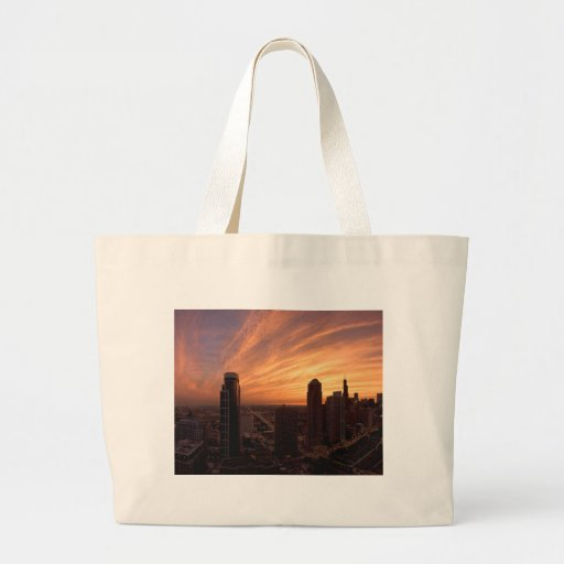 Chicago Twlight Bags