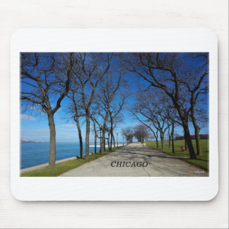 Chicago-Winter Mouse Pad