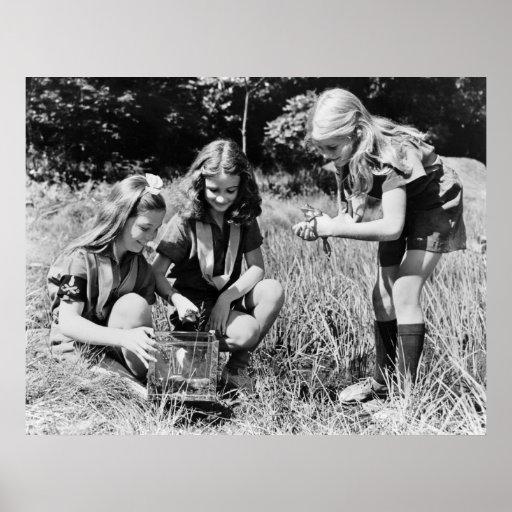 Chicas que recogen las ranas, los años 40 posters