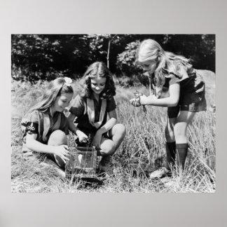 Chicas que recogen las ranas los años 40 posters