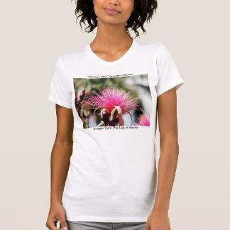 Chichen Itza, Yucatan, Mexico T-shirts