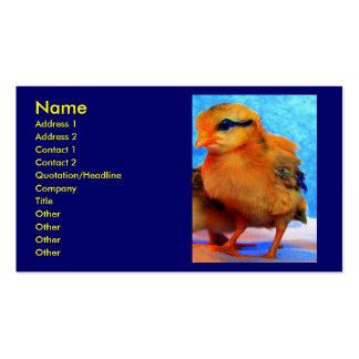 Chick-A-Dee-Light Business Card Business Card Templates