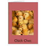 Chick Chat Greeting Card