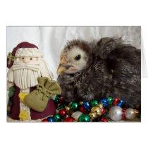 Chick Christmas Card