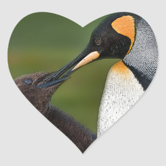 Chick feeding heart sticker