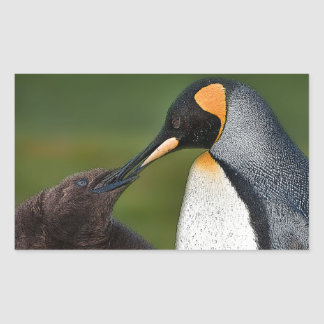 Chick feeding rectangular sticker