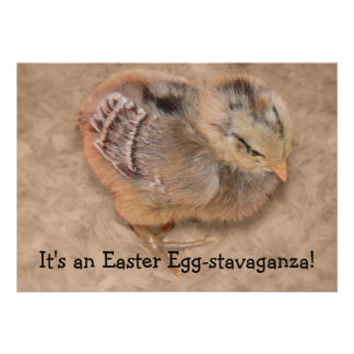 Chick - Fluffy Baby Chicken Easter Custom Invites