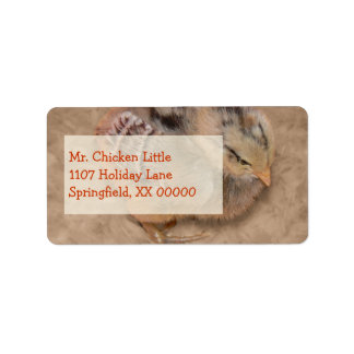 Chick - Fluffy Baby Chicken Personalized Address Label