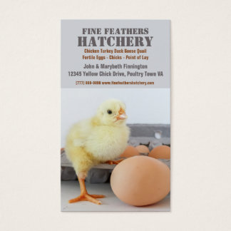 Chick in Egg Carton Chicken Hatchery Business Card