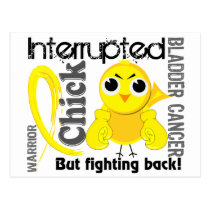 Chick Interrupted 3 Bladder Cancer Postcard