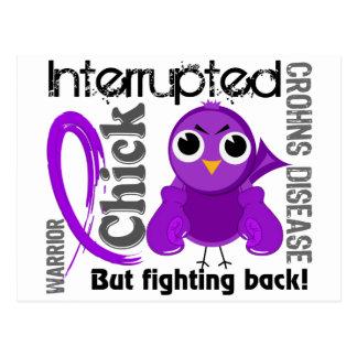 Chick Interrupted 3 Crohn's Disease Postcard