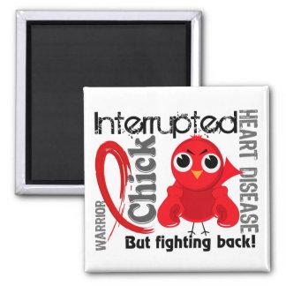 Chick Interrupted 3 Heart Disease Magnet