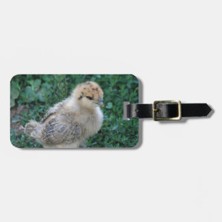 Chick Luggage Tag