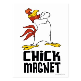 Chick Magnet Postcard