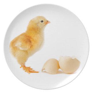 Chick Melamine Plate