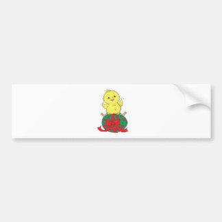 Chick on Easter Egg Bumper Sticker