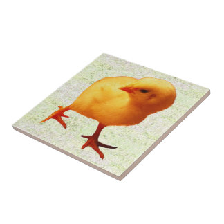 Chick on the Move (2) Small Square Tile