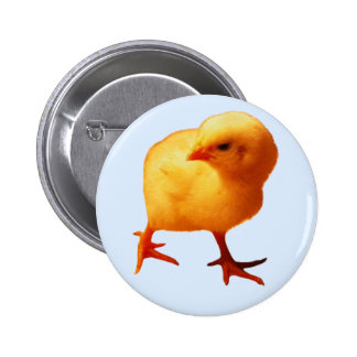 Chick on the Move Button