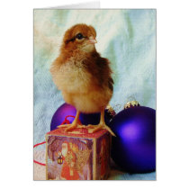 Chick on Vintage Christmas Ornament Card