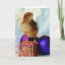 Chick on Vintage Christmas Ornament Holiday Card