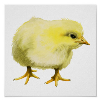 Chick Watercolor Painting Poster