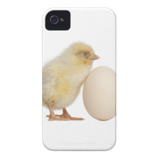 Chick with egg (2 days old) iPhone 4 cover
