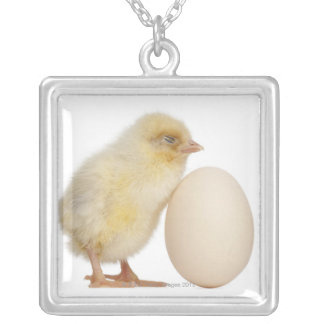 Chick with egg (2 days old) silver plated necklace