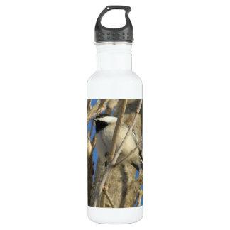 Chickadee 01 water bottle