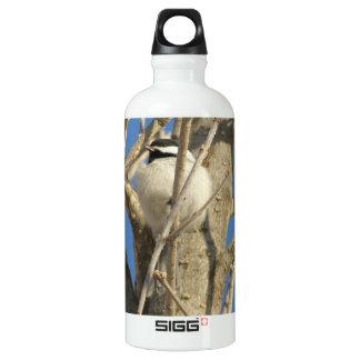 Chickadee 02 water bottle